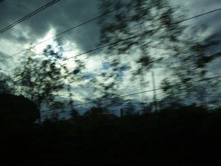 車窓から走る木々.jpg